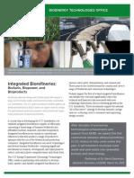 Ibr Portfolio Overview