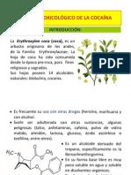 clasescocainamarihuana-120817222906-phpapp02