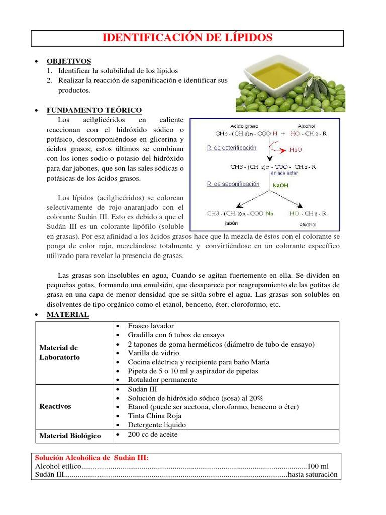 identificacion de lípidos