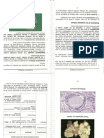 Compendio de Patologia UPT
