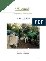 BOISÉ Rapport 2014