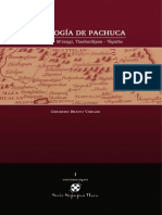 Gerardo Bravo Vargas - Etimologia de Pachuca (Pachyohcan - Maxugi, Tlaahuililpan - Ñunthe)