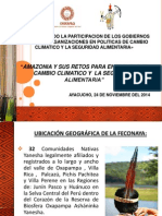 Amazonía y sus retos para enfrentar el cambio climático y  la seguridad alimentaria