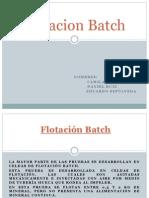 Flotación Batch (1)