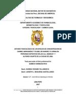 Concentracion de Cadmio Magnesio y Pomo en La Sangre en La Av.abancay