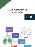 Perfusion Ventilacion Pulmonar