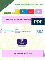 Causas de Discapacidades