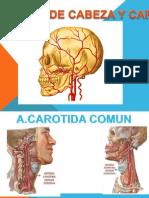 vascularizacion de cabeza y cuello.pptx