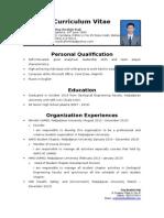 Curriculum Vitae Roy Ibrahim