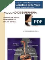 VIA ENTERAL PPT.pdf