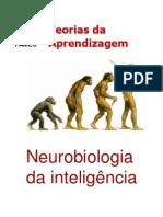 Neurobiologia da inteligência