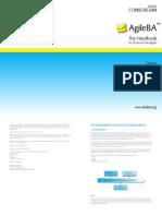 Agile BA Extract DSDM