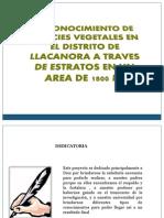 Diapositivas de Proyecto Del Sig
