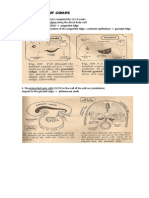 GENITAL EMBRYOLOGY.pdf