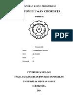 Laporan Praktikum Amphibi