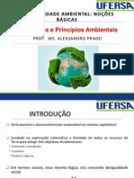 4. Conceitos e Princípios Ambientais