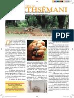 Informativo Gethsêmani