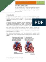 U1. FISIOPATOLOGÍA DEL APARATO CIRCULATORIO.pdf