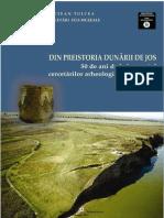 Ailincai Mihail Constantinescu - Asezarea de La Enisala Palanca - Cercetari 2010 - LDP 2013-Libre