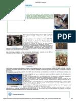EME_DS01_Contenidos.pdf