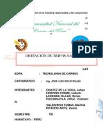 2. Informe Tripas