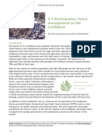 Participatory forest management in the Caribbean
