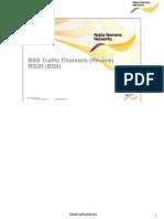 02 RN28192EN20GLA0 BSS Traffic Channels