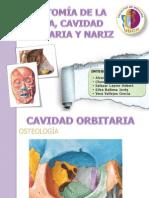 Cara, orbita y nariz.pptx
