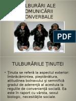 TULB COMUNICARE Nonverbal A Si Verbala