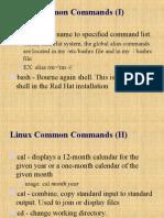 Common Linux Command