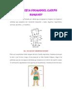 Cómo Esta Formado el Cuerpo Humano