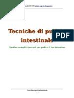 Tecniche di pulizia intestinale
