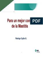 unmejorcontroldelamastitisfp-111220084559-phpapp02.pdf