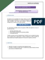 METABOLISMO BASAL.docx