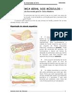 Anatomia General Dos Musculos-1