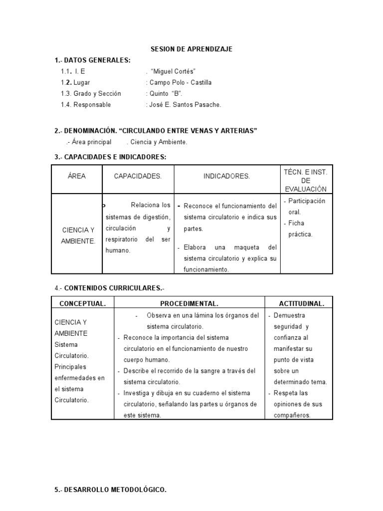 Dorable Sistema Circulatorio Hoja De Trabajo De Grado 5 Ideas ...