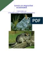 CCMPPMAM06.pdf