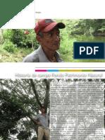 Conectando el bosque caribeño a través de agricultura sostenible