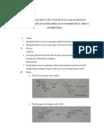 Identifikasi Senyawa Golongan Alkaloid Dan Basa Nitrogen