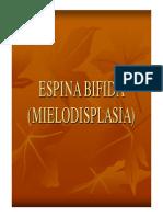 Espina Bifida Miel o Displa Sia