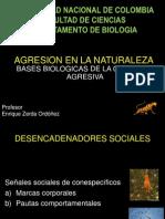 4)AGRESION EN LA NATURALEZA.pdf