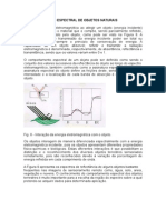 SR Paiva - 2 - Comportamento - Espectral