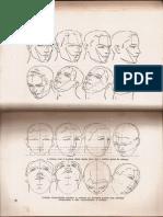 Anatomia Livro