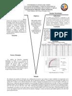 Informe Concentración de Los Minerales 2 Final Arreglenlo y Mandenlo