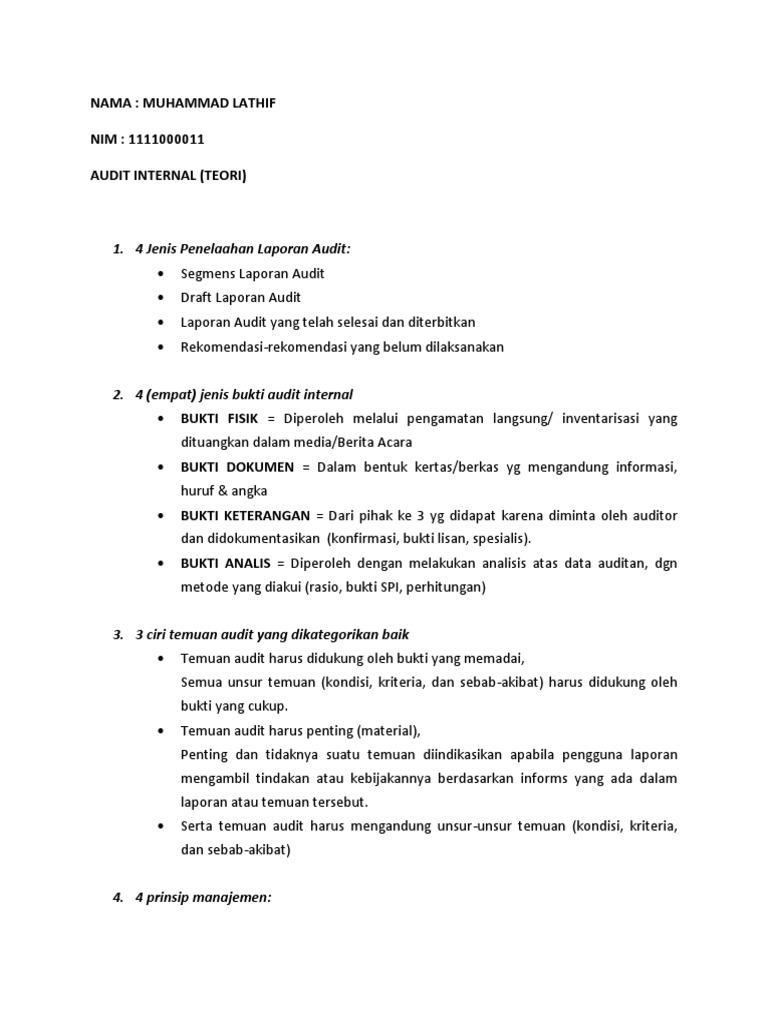 Audit Internal Docx