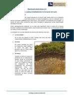 Resolución de La Guía Nº 4 Ecologia