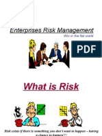 Enterprise Risk Mangement