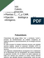 Cuarta Clase.fisiologia