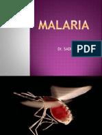 Malaria Presentation