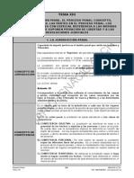 tema13_derecho_penal.pdf
